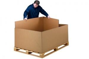 CKD BOX (1)