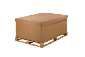 CKD BOX (4)