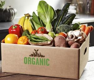 Organic Angels