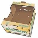Caja de cartón para cítricos