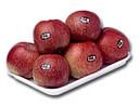 Control on line de la calidad de frutas