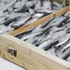 Caja-madera-pescado-Grow