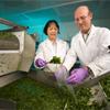 Embalaje de alta tecnología ayuda a preservar frutas y vegetales