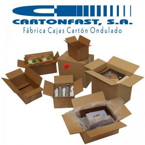 Cajas-Cartonfast