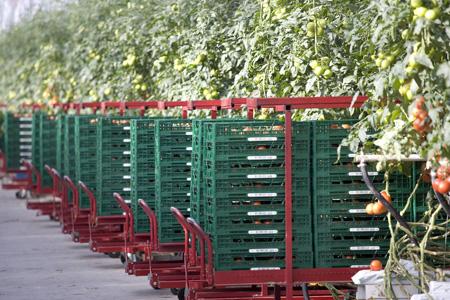 Envases reutilizables para una logistica sostenible1
