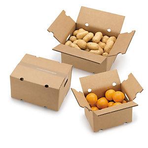 caja-envio-frutas-y-verduras-solapas