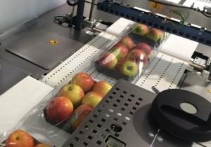 394 x246 Per-Pack.Servo X. Bandejas de fruta retractiladas (2)