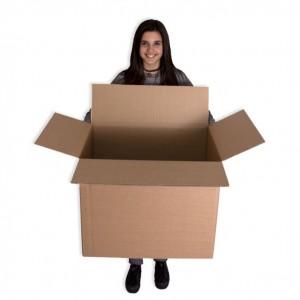 caja-canal-doble-600x400x500_l