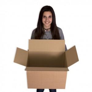 caja-canal-simple-425x275x325_l