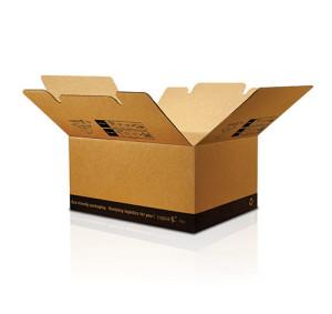 capsa-2in1-caja-de-carton_gra