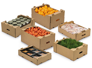 Cajas para el envío de alimentos