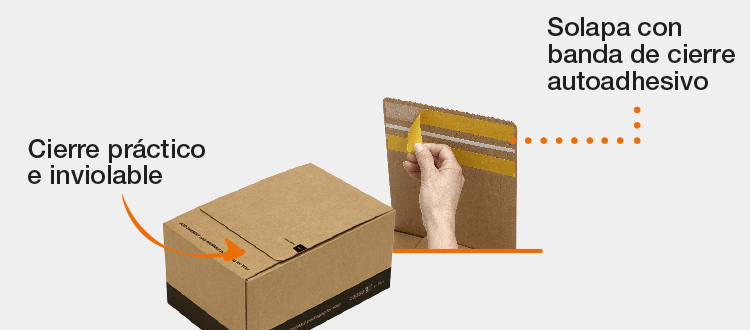 Envío (transporte seguro)