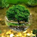 Un 37,4% de los españoles rechazan cambiar sus hábitos a favor del medio ambiente
